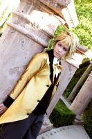 Len Kagamine: In A Closed Off World by OztheNekoMaster