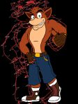 Crash Bandicoot by VerdantStrike