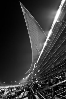 at the races by sriramc