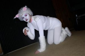 Me as Victoria the White Cat by Kimberly-AJ-04-02