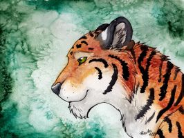 Tiger portrait by RaikaDeLaNoche