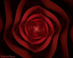 Blood Rose for BD by Colliemom