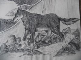 charcoal wolf by Armadeo