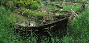 Old Wooden Boat by biancomanto