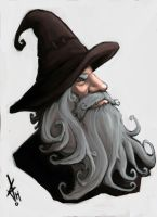 Old Man Wizard by JChico