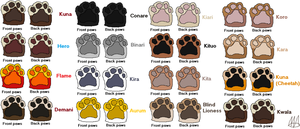 Paw Reference Sheet by Kuna-Hero