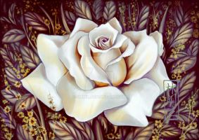 White Rose by emmil