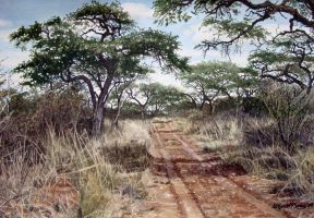 Namibian Road by WillemSvdMerwe