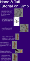 Mane and Tail Colouring Tutorial Part 1 by Cheshire----Cat