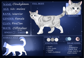 CLOUDYDAWN | Application | The-Warriors-Guild by rainwolfeh