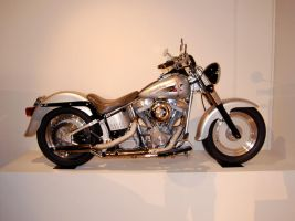 1999 Harley Fat Boy 1 of 10 by Partywave