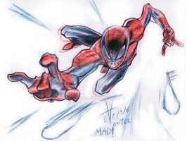 better late then never!! this si 4 spider-man by an-HELL-us