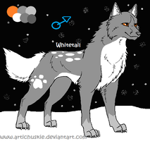 My guardian Wolf, Whitetail by JJ-cat