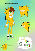 .:Ref:. Mectrox the Hedgehog by Radioactive-Death