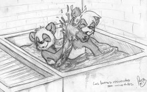 The water basin by pandapaco