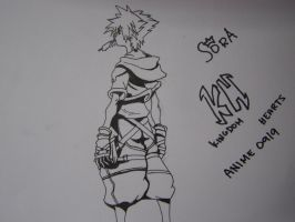 Sora by aNiMe0919