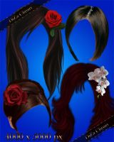 Hairstyles with the decorations and flowers by DiZa-74
