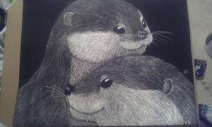 Scratchboard otters by Pigeon-Feathers