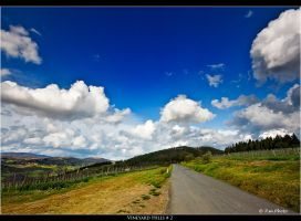 Vineyard Hills_2 by Marcello-Paoli