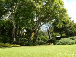 The Grounds by AllAboutDianne