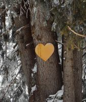 THE WOOD HEART by isabelle13280