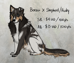Borzoi X Shepherd/Husky Adopt Auction [CLOSED] by JatoWhitz