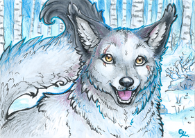 ACEO_Cloudstar-wolf by Kyuubreon