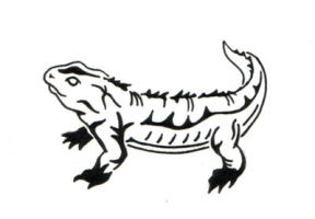 Tuatara Tattoo by sparkycom
