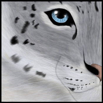 Snow Leopard by AntaresIceslayer