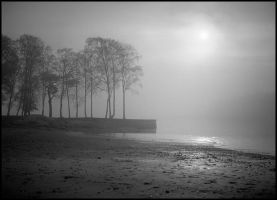 Beach in fog by eswendel