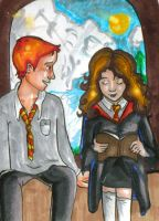 Ron watching Hermione by bachel60