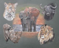 The African Big Five by Stephanie-Greaves