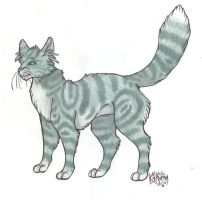 Jayfeather by StarDapple