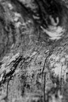 ...wood lines. by square-brain