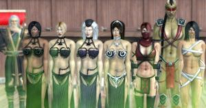 The Completed Harem by VG-MC