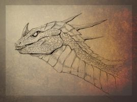 Albino Drake by TheTundraGhost