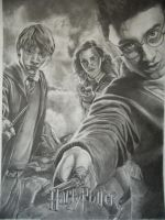 Harry Potter by AnoukR