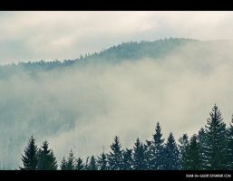 Misty Valley... by Iulian-dA-gallery