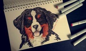 Bernese Mountain Dog Puppy by whispering-She-Wolf