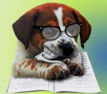 Dog Ate my Homework by SpazzinOut