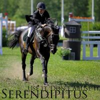Show Jumper 1 by Serendipitus