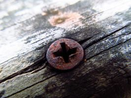 Rusted Screw by Verquaciousness