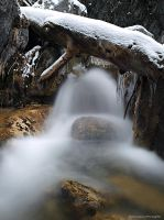 Snowcapped fall by photogrifos