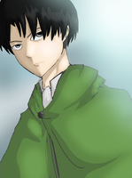 Rivaille by Ringtail14