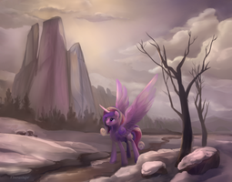 Cadance of the north Dec 28th by viwrastupr