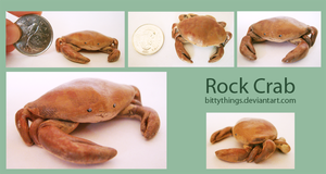 Rock Crab - Gift by Bittythings