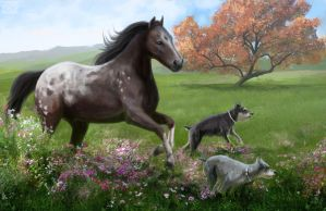 Selma's Appaloosa (final) by psypher101