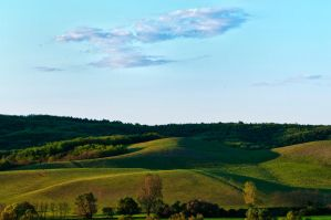 Hilly by Miky57