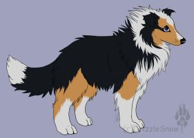 Collie Adopt by DrizzleSnow