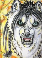 ACEO: Heaven's Not Enough by cloudstar-wolf